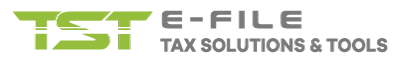 E-File Group - Professional Tax Services & Software